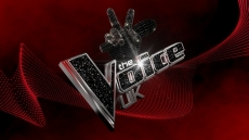 Blind Auditions 1