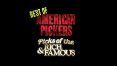 Picks of the Rich & Famous