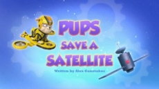 Pups Save A Satellite