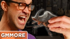 Eating Boiled Beetles - Good Mythical More