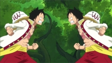 A Mysterious Forest Full of Candies! Luffy vs. Luffy!