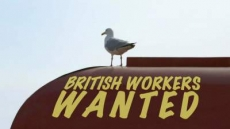 British Workers Wanted